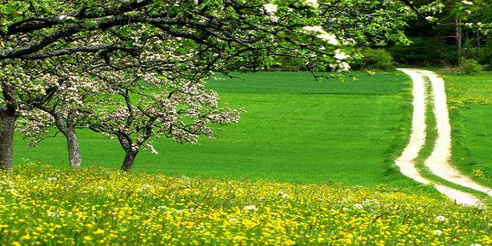 Frühlingslandschaft in Bayern