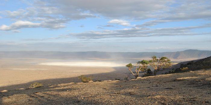 Bild vom Ngorongoro-Krater