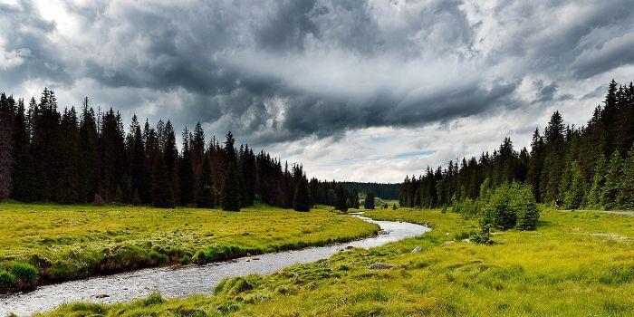 Ein kleiner Fluss in mitten der Natur des Böhmerwald