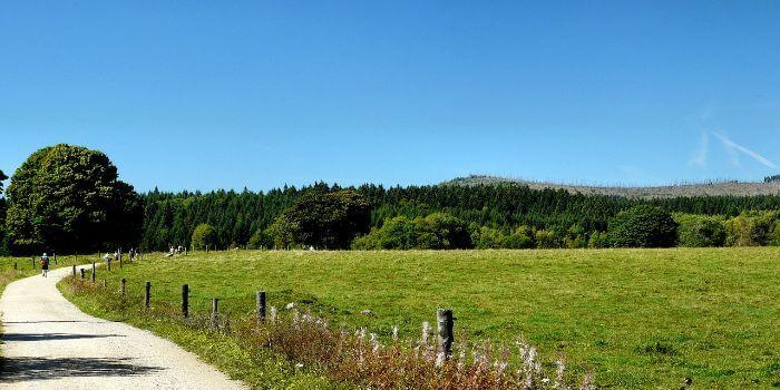 Ein kleiner Weg quer durch die Natur des Böhmerwald