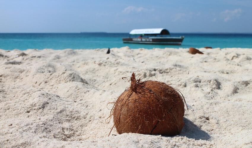 Eine Kokosnuss liegt einsam an einem weißen Sandstrand mit dem Meer im Hintergrund.