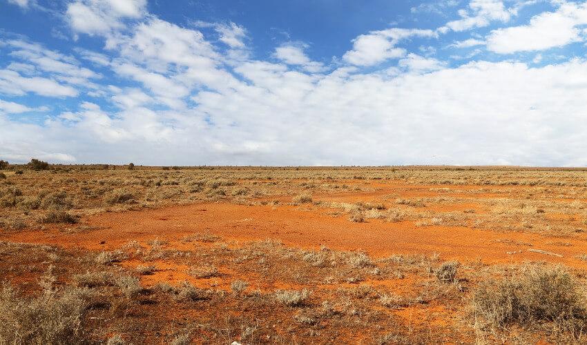 Roter Sand mit ausgedörrten Gräsern soweit das Auge reicht.