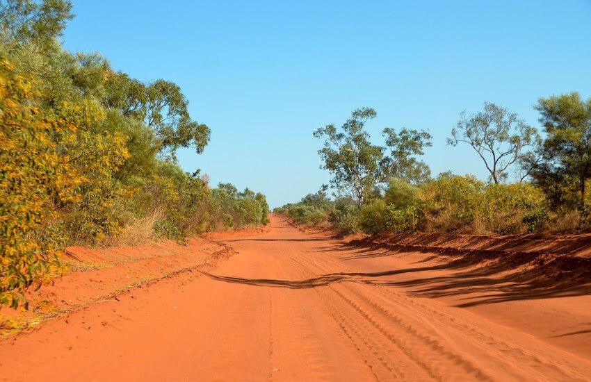 Eine Straße aus rotem Sand. Links und rechts davon Sträucher und Bäume.