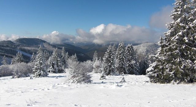 Ski-Urlaub der besonderen Art – Heliskiing in Österreich und der Welt